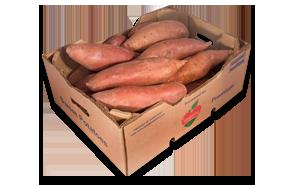 01-Sweet-Potatoe-Monty